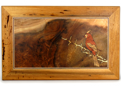 Pyrrhuloxia wall art